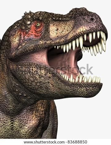 Tyrannosaurus Rex closeup illustration of head and eye, mouth open teeth showing. Isolated cutout or clip art on clean white background. - stock photo