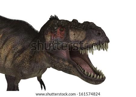 Tyrannosaurus with path - stock photo