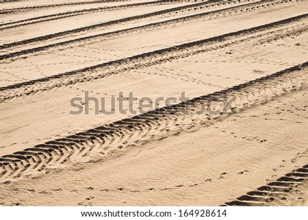 Tyre tracks on sand, a full frame take