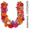 U,flower alphabet isolated on white - stock photo