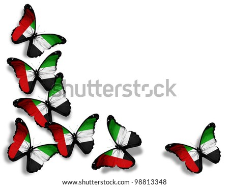 UAE flag butterflies, isolated on white background - stock photo
