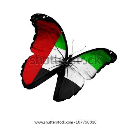 UAE flag butterfly flying, isolated on white background - stock photo