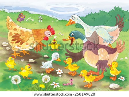 Ugly duckling. Fairy tale. Illustration for children - stock photo