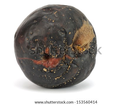 Ugly rotten apple isolated on a white background - stock photo