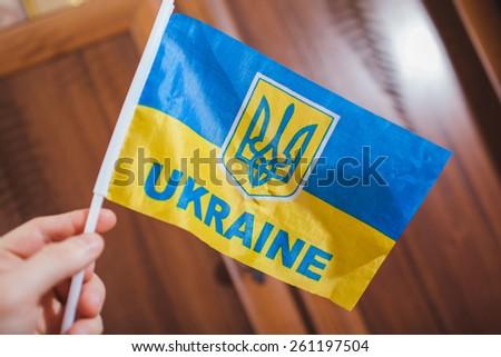 Ukraine flag - stock photo