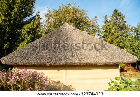 Thatch Stock Photos Royalty Free Images Amp Vectors