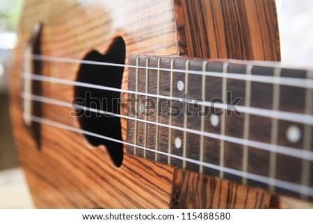 ukulele guitar family - stock photo