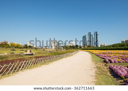 ULSAN, KOREA - OCTOBER 13, 2015: Walkway in Taehwagang grand park and Modern buildings, South Korea.