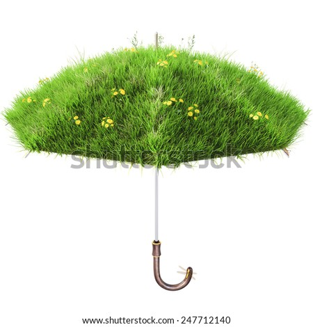 umbrella covered with green grass. isolated on white background. - stock photo