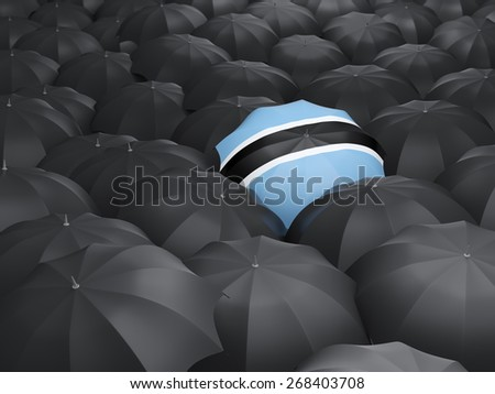 Umbrella with flag of botswana over black umbrellas - stock photo