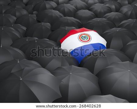 Umbrella with flag of paraguay over black umbrellas - stock photo