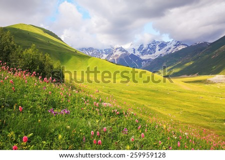 Unbelievably nice sunny day spent in the mountains - stock photo