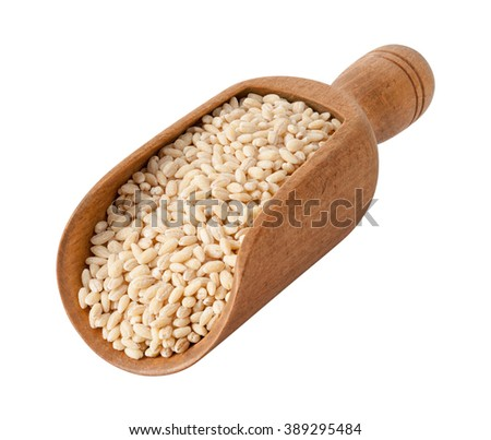 Uncooked Natural Pearled Barley in a Wood Scoop. The image is a cut out, isolated on a white background, with a clipping path. The image is in full focus, front to back. - stock photo