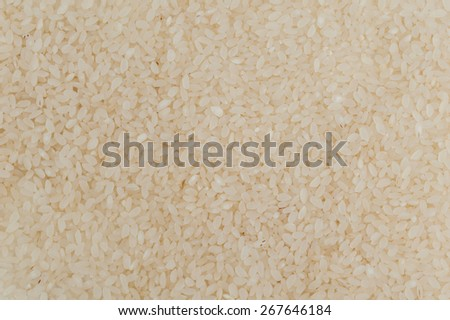 Uncooked risotto sushi rice grains texture background - stock photo