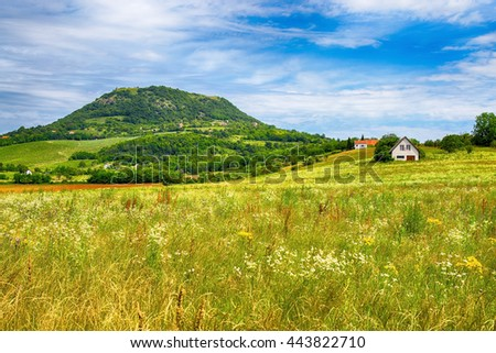 Uncultivated green field at the foot of Badacsony mountains in Hungary - stock photo