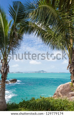 under coonut tree coastline view at samui thailand - stock photo