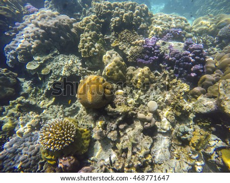 Under Water National Park Surin Island