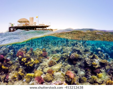 Underwater and surface split view in the tropics paradise with fish and coral reef, above waterline, beautiful view on pier on red sea. Egypt, Safaga, Holiday snorkeling vacation concept