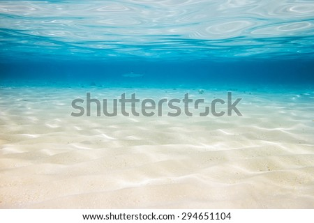 underwater background with sandy sea bottom