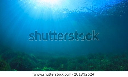 Underwater blue ocean and sun - stock photo