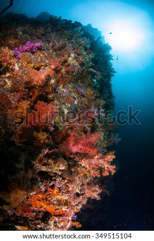 Underwater Blue Sea and soft coral rock  - stock photo