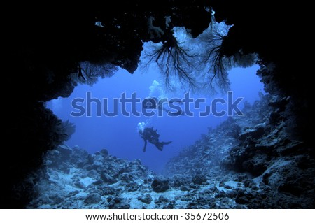 underwater cave with sea fans - stock photo