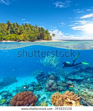 Underwater coral reef with scuba diver - stock photo