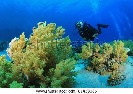 Underwater image of Diver on Scuba swimming over Coral Reef in clear blue sea