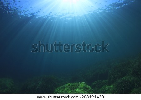 Underwater in Ocean - stock photo