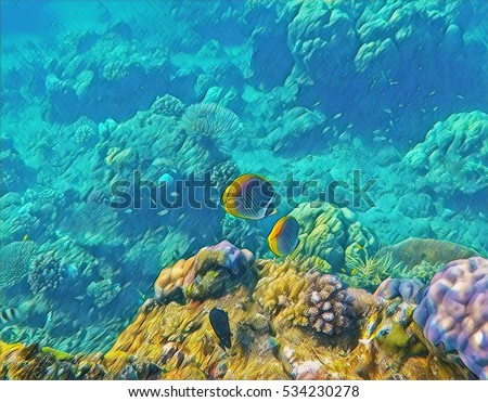 nature coral underwater landscape - photo #46