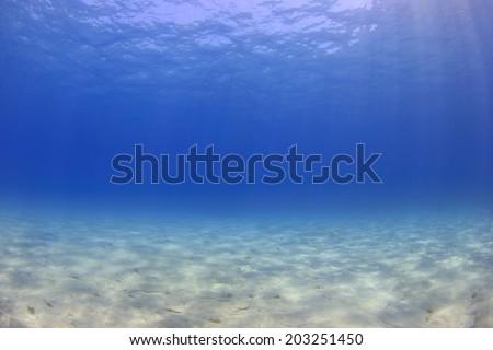 Underwater ocean background blue sea - stock photo