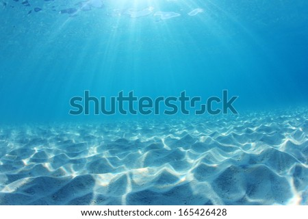Underwater ocean background with sandy seabed - stock photo