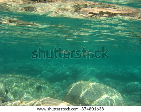 Underwater photo of sea or ocean bottom or depths, ideal for use as a background. - stock photo