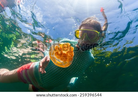 Underwater photo of tourist woman snorkeling with endemic golden jellyfish in lake at Palau. Snorkeling in Jellyfish Lake is a popular activity for tourists to Palau. - stock photo