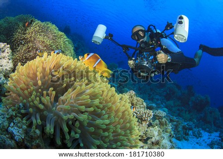 Underwater Photographer scuba diving on reef with clownfish - stock photo