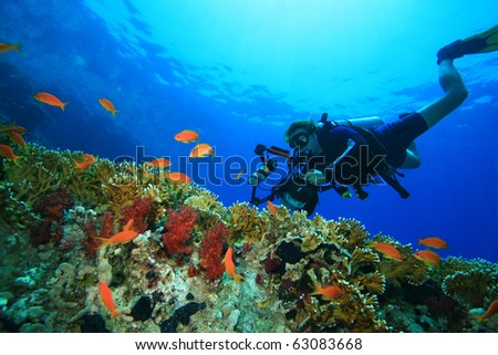 Underwater Photographer with digital SLR camera in a housing scuba dives on a coral reef - stock photo