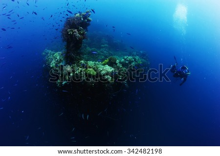 Underwater photography. Photographer diver scuba take a photo or video near reef ocean. Actual under water Photo. 30 meters depth. Japan sea, Far East