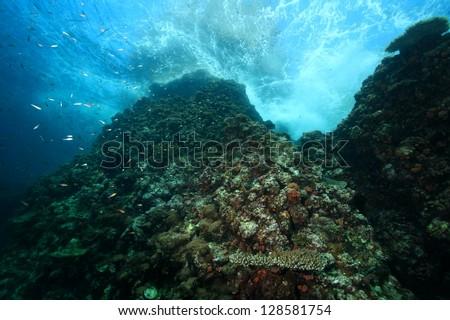 Underwater Rock - stock photo