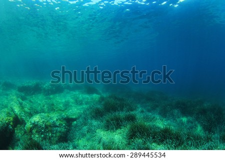 Underwater Scene in blue sea - stock photo