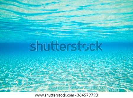 underwater scene with copy space