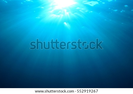 underwater lights stock photos, royalty-free images & vectors, Reel Combo