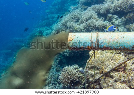 underwater sewer pipe in coral reef - stock photo