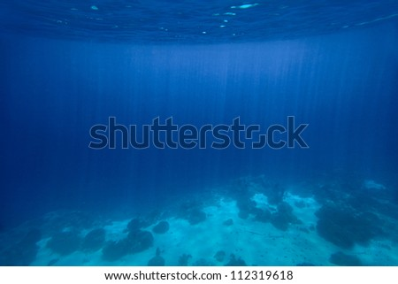 Underwater shoot of a sea bottom with sand coral reef and rocks - stock photo