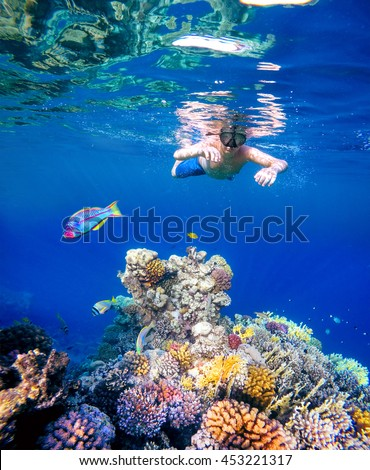Underwater shoot of a young boy snorkeling and diving in a tropical red sea coral reef with Klunzinger's Wrasse (Thalassoma rueppellii)Also known as Lunate-tailed Wrasses and other fish in Egypt