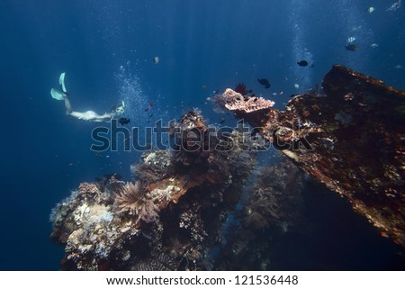 Underwater shoot of a young woman exploring USAT Liberty wreck on a breath hold. Tulamben, Bali island, Indonesia - stock photo