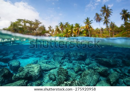 Underwater split shot of the sea rocky bottom and palm trees on the coast at sunny day - stock photo
