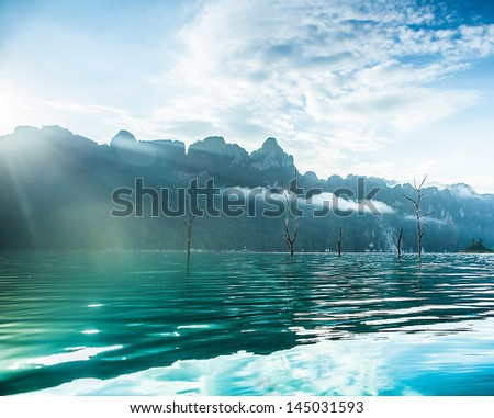 Underwater trees on river in mountains.