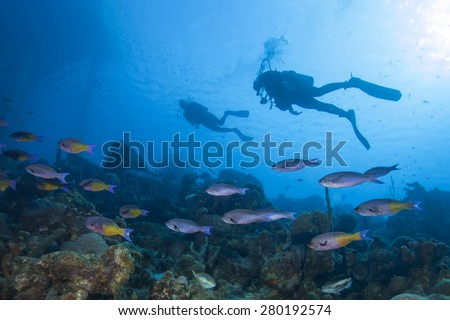 Underwater tropical coral reef with scuba diver silhouette - stock photo
