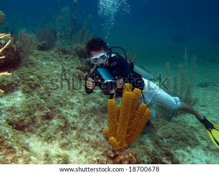 Underwater Videographer shooting a Tube Sponge in Cayman Brac