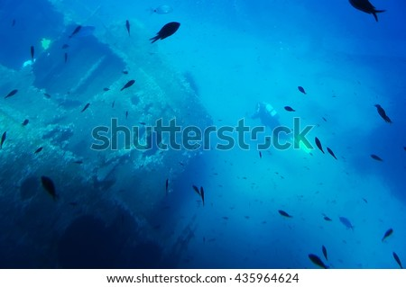 Underwater view in front of the west coast of the Island of Elba, Tuscany, Italy